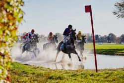 Partynice  – 7000 widzów na zakończeniu sezonu wyścigowego
